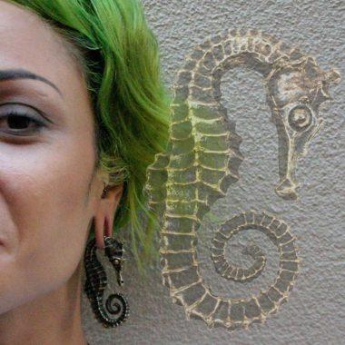 seahorse-1